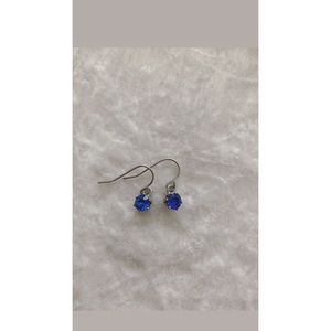 Blue Simple Dangling Earrings